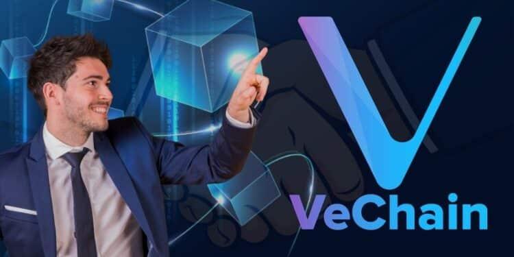 Popular VeChain Partnerships and Adoption